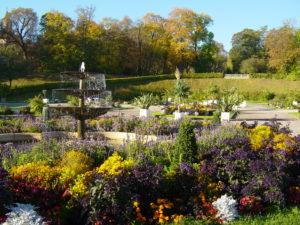 Gotha Und Umgebung Offene Garten Open Gardens